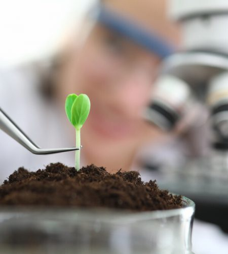 Agricultural Soil Testing