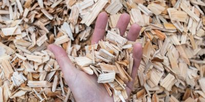 Biomass Testing