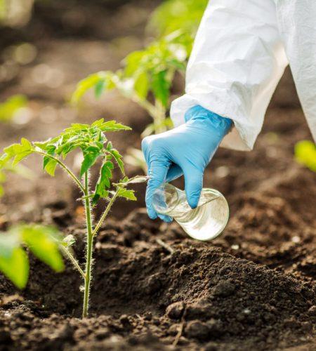 Soil Quality Testing