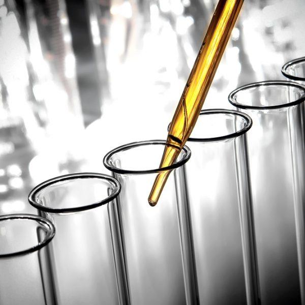 Food Microbiology Testing